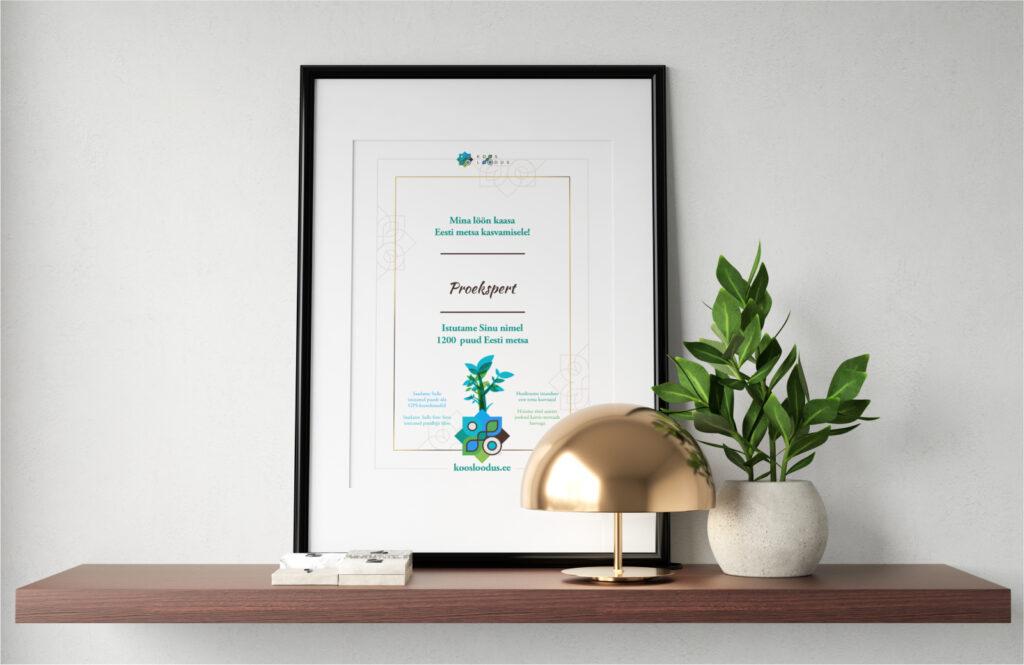 Proekspert Diploma
